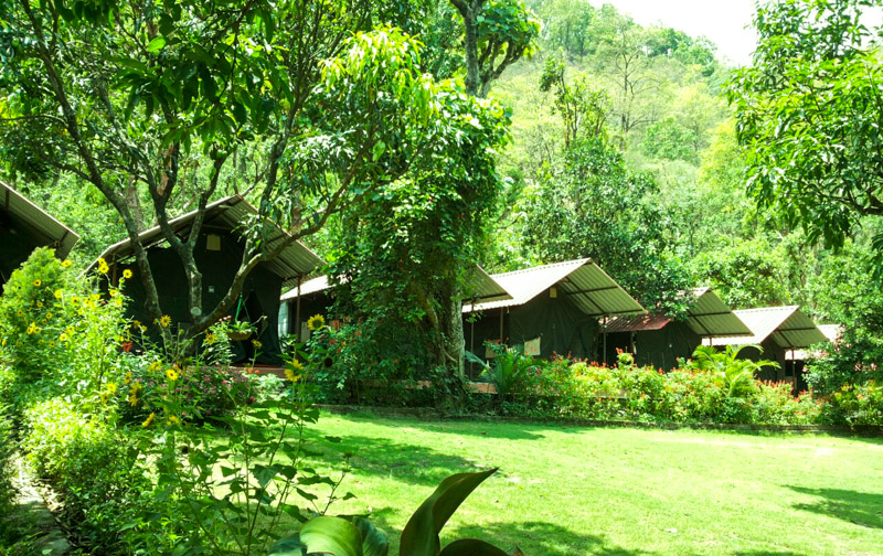India Thrills Deluxe Camp Stay in Pebbles Resort 2