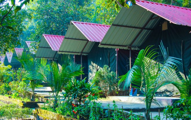 India Thrills Deluxe Camp Stay in Pebbles Resort 8