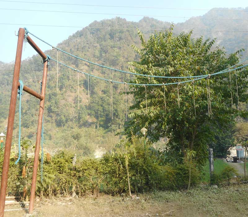 rappelling Activity in India Thrills Camps