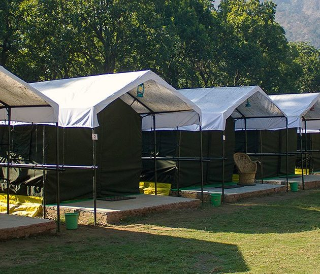 One of India thrills campsite