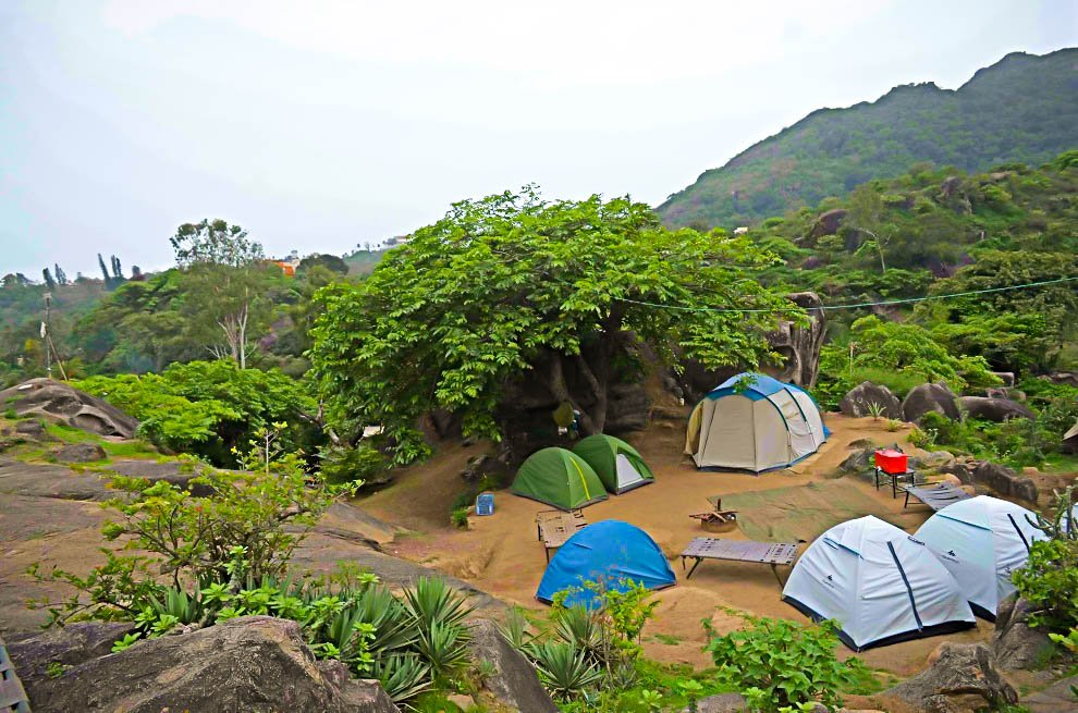 Camping In Mount Abu