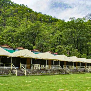 Nature Valley Camp  Luxury Camps in Rishikesh