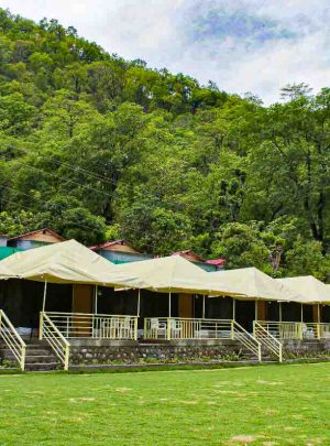 Nature Valley Camp| Luxury Camps in Rishikesh