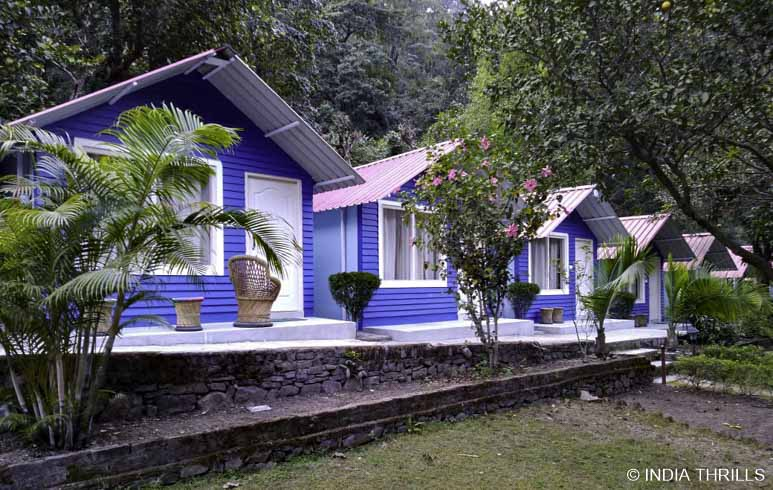 Pebbles camp stay in Rishikesh
