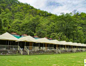 Nature Valley Camp| Luxury Camping in Rishikesh